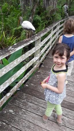 lili and the bird